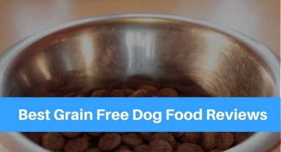 Best Grain Free Dog Food – Reviews & Comparisons