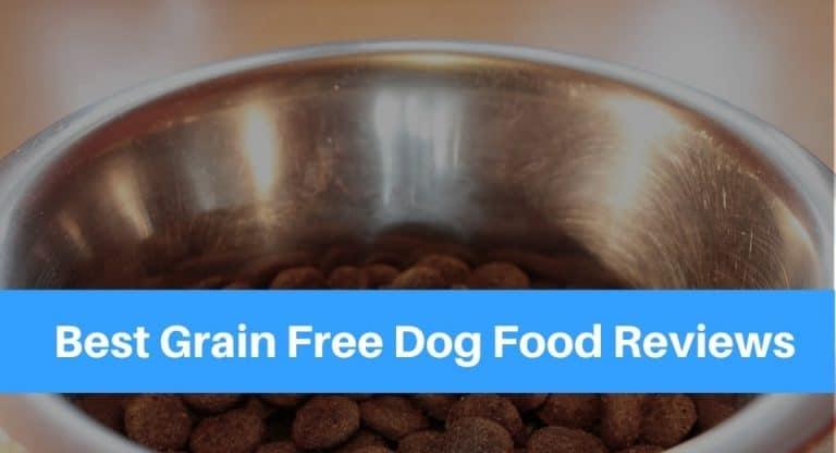Best-Grain-Free-Dog-Foo