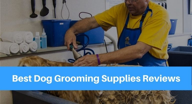 best-dog-grooming-supplies