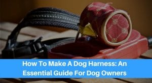 How To Make A Dog Harness: An Essential Guide For Dog Owners