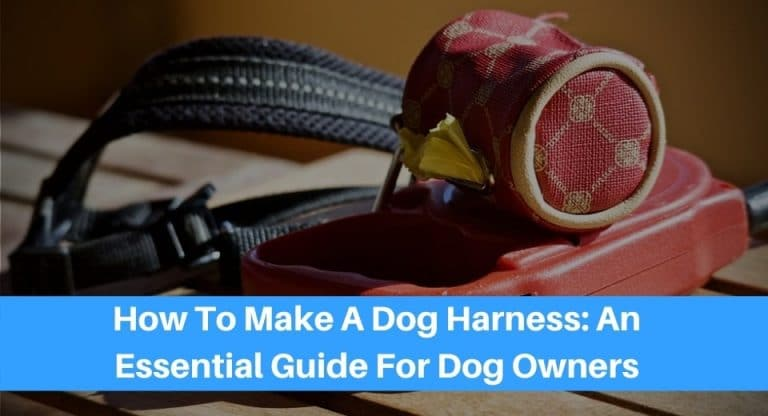 DIY-Your-Dogs-Harness