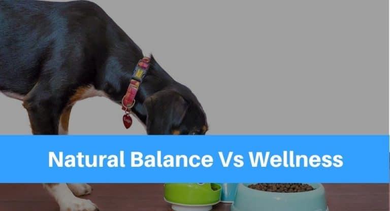 Natural Balance VS Wellness