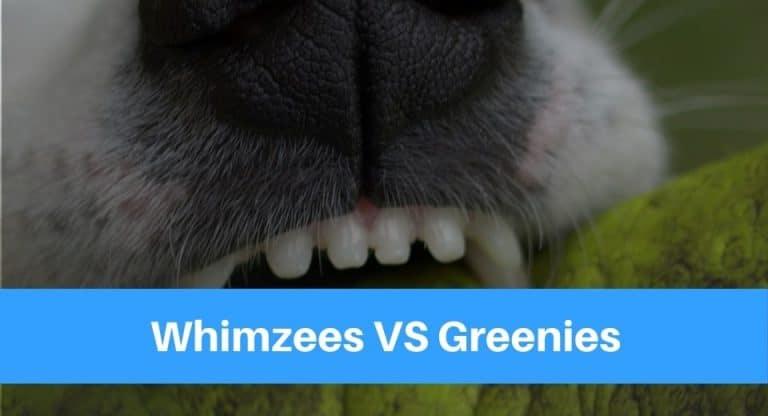 Whimzees VS Greenies