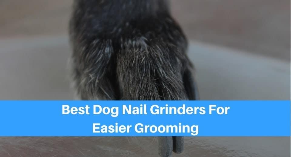 Best Dog Nail Grinders For Easier Grooming