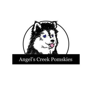 Angel's Creek Pomskies