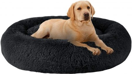 MFOX Calming Dog Bed