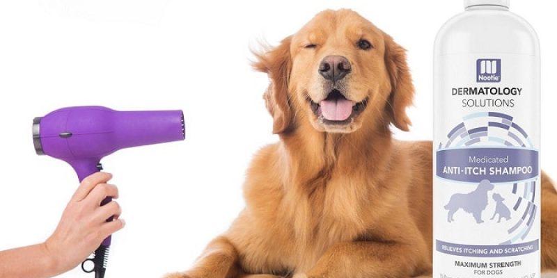 Best Dog Shampoo Reviews 2017
