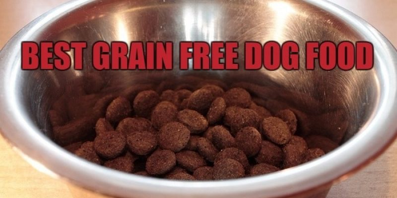 Best Grain Free Dog Food Reviews 2017