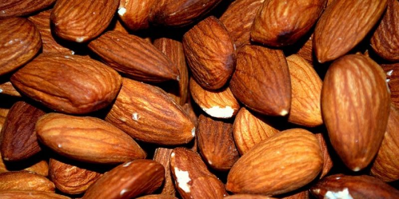 Can Cats Eat Almonds?