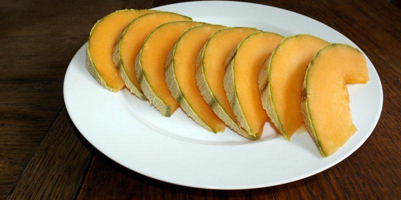 Can Cats Eat Cantaloupe?