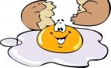 Can Cats Eat Scrambled Eggs?