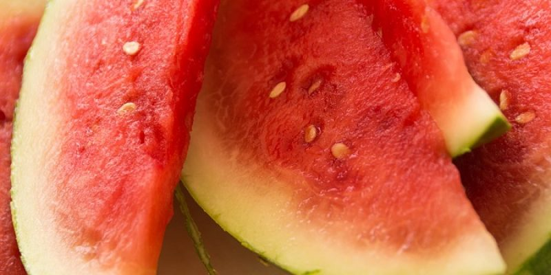 Can Cats Eat Watermelon?