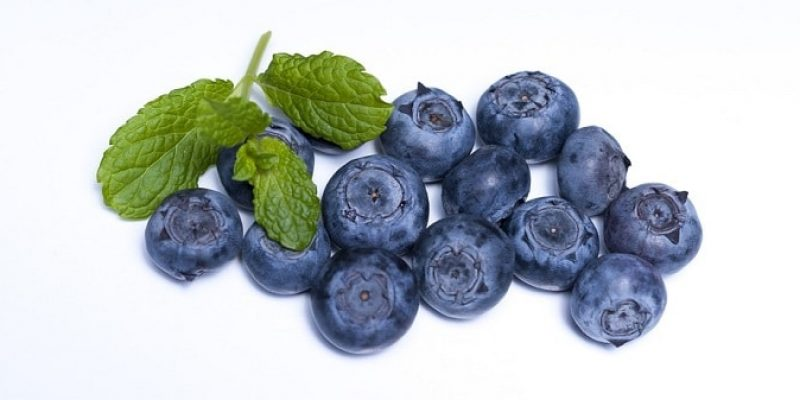Can Dogs Eat Blueberries?