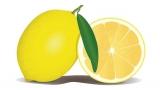 Can Dogs Eat Lemon?