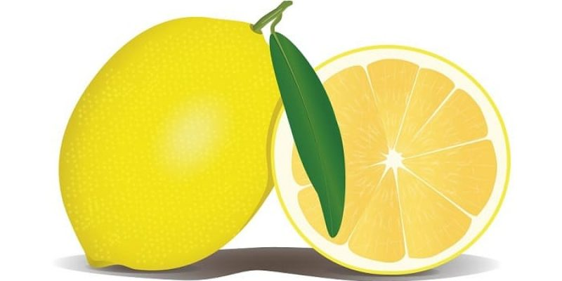 Can Dogs Eat Lemon?