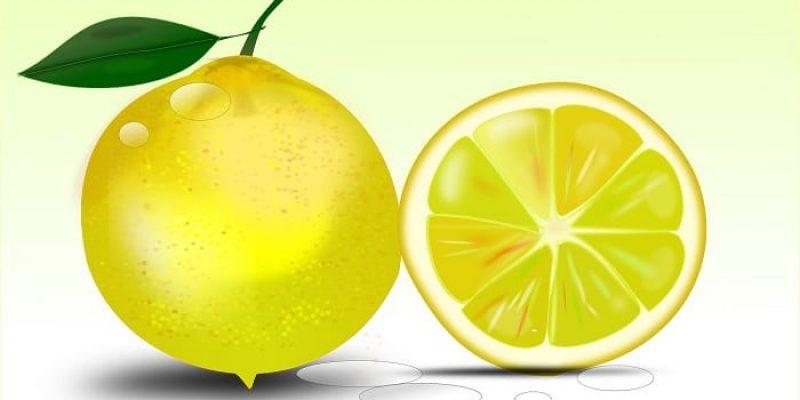 Can Dogs Eat Lemons?