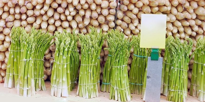Can Guinea Pigs Eat Asparagus?