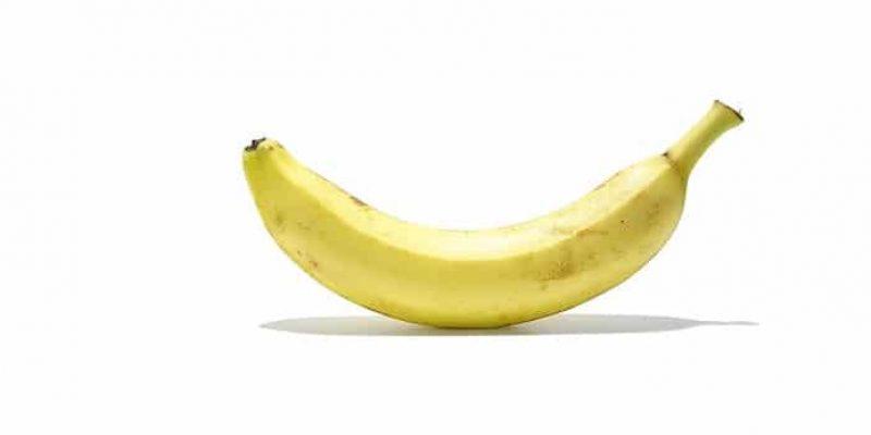 Can Rabbits Eat Bananas?